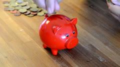 Moneypig Stock Footage