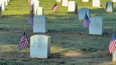 Graves tuntemattomasta sotilasta koristeltu lippu. Arkistovideo