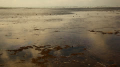 Low Tide in Recife Brazil HD Video Stock Footage