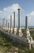 ancient columns of tyre, lebanon - stock photo