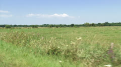 Vehicle shot summer countryside, pasture + ditch Stock Footage