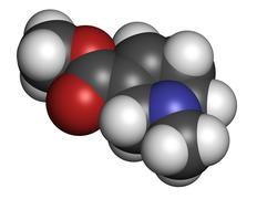arecoline areca nut stimulant compound, chemical structure. - stock illustration
