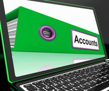 Accounts file on laptop shows accounting Stock Illustration