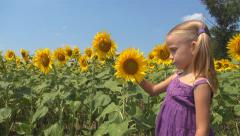 Child, Girl Playing with Sunflower in Agriculture Field, Children at Countryside Stock Footage
