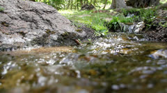 Close up of a creek with fresh water in a forest Stock Footage