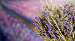Close up on Lavender bouquet Home Fragrance Shoot with Slider Stock Footage