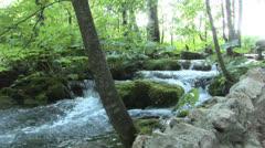 Plitvice Waterfall Stock Footage