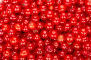 Stock Photo of redcurrant background