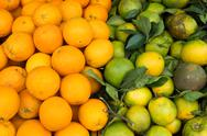 Stock Photo of oranges