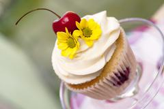 cupcake with cherries and flower - stock photo