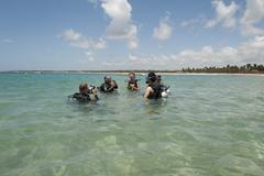 Diving lessons porto de gallhinas pernambuco brasil Stock Photos