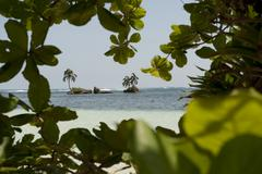 Paradise island bocas del toro panama Stock Photos