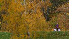 Moscow. Neskuchny garden view from the Moscow river Stock Footage