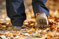 A man strolling through the forest in autumn Stock Photos