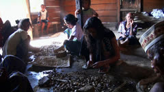 Flores people in a jungle village preparing Cocoa Beans Stock Footage