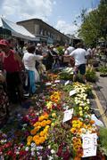 columbia flowers market london - stock photo