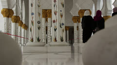 Sheikh Zayed Grand Mosque in Abu Dhabi (61) Stock Footage