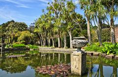 Stock Photo of Pond and trees in Logan Botanic Gardens