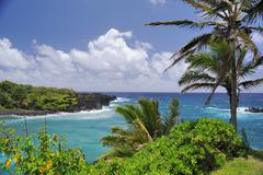 Seaview On The Road To Hana - stock photo