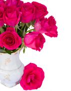 mauve roses posy close up - stock photo