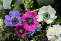 Anemones in bridal arrangement Stock Photos