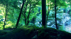 Great Nature Stock Footage