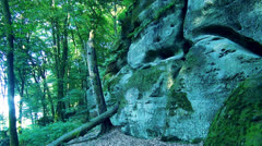 Big rocks in the forest Stock Footage