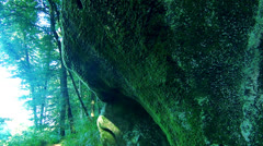 Green rocks with moss Stock Footage