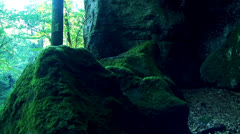 Rocks with moss Stock Footage