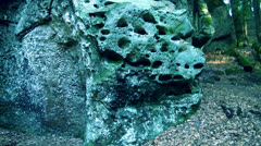 Natural rocks in forest Stock Footage