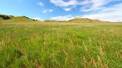 Sage Creek Grassland - Badlands National Park Stock Footage