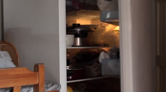 Opening and closing refrigerator Stock Footage