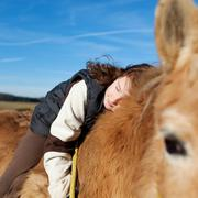 Stock Photo of girl demonstrating affection foe her horse