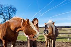 pretty young girl with horses - stock photo
