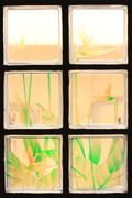 transparent glass tiles with colorful flower paint background. - stock photo