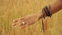 Stock Video Footage hand caressing the grass - stock footage