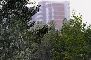 In the city rain Stock Photos