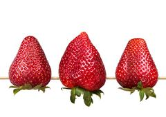 fresh red strawberry collection isolated - stock photo