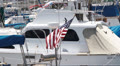 American Flag on Boats In Marina Footage