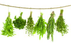 Set of spice herbs / hanging and drying /  isolated on white background Stock Photos