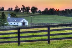Horse farm sunset Stock Photos