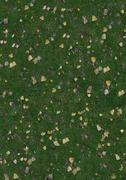 grass texture with leaves - stock photo