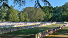 Military cemetery with flags on gravestones in early morning Stock Footage