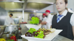 Delicious gourmet dish is being given the finishing touches - stock footage