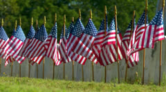American Flags displayed in front of military graves Stock Footage