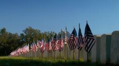 Liput näkyy sotilaiden hautoja hautausmaa Arkistovideo