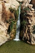 travel photos of israel - ein gedi spring - stock photo