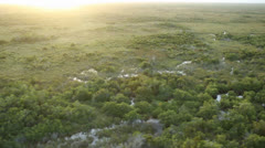 Aerial Shot of Everglades Grasslands Stock Footage