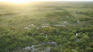 Stock Video Footage of Aerial Shot of Everglades Grasslands