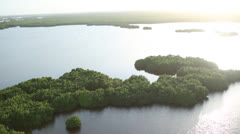 Stock Video Footage of Helicopter View of Everglades